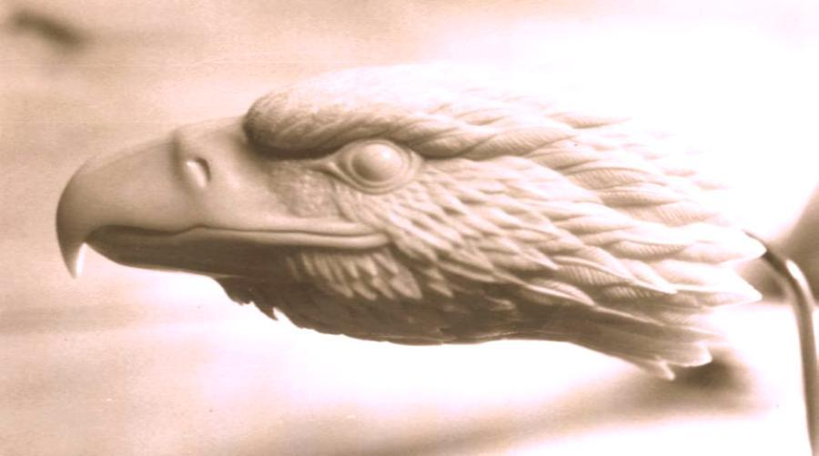 Wood carving eagle head